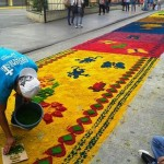 Megaalfombra-Paseo-Sexta_PREIMA20140417_0133_32